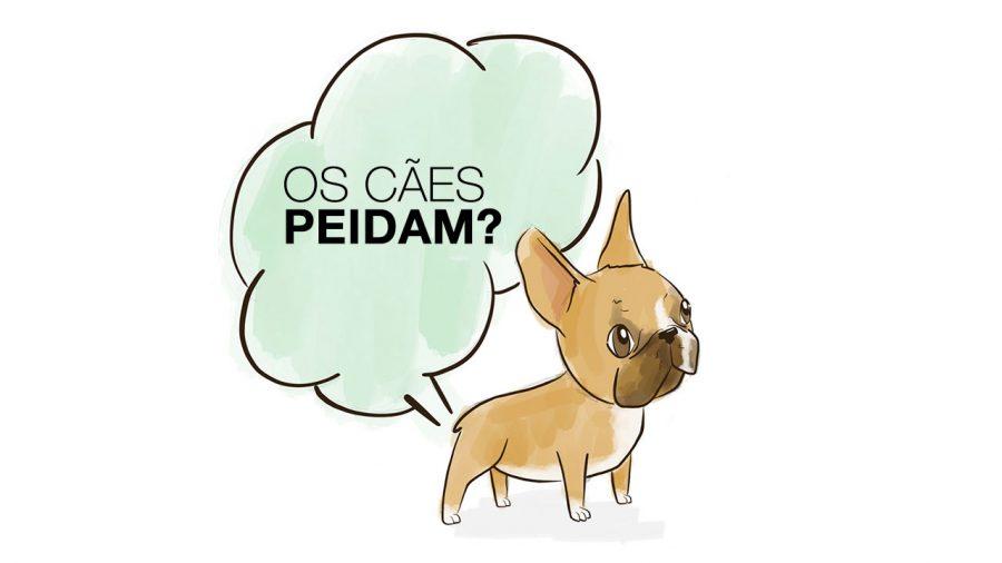 Os cães peidam?