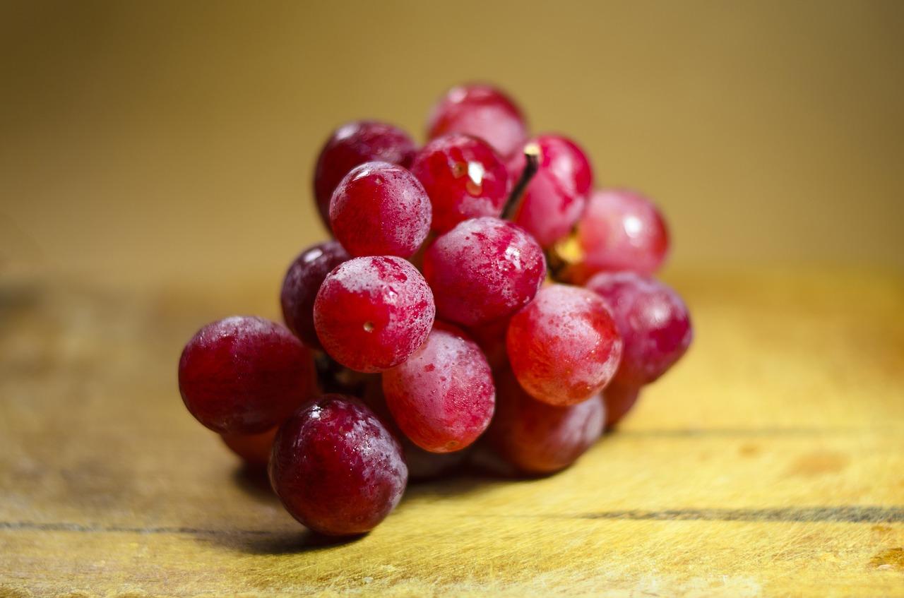 Alimentos que os cães não podem comer - Uvas