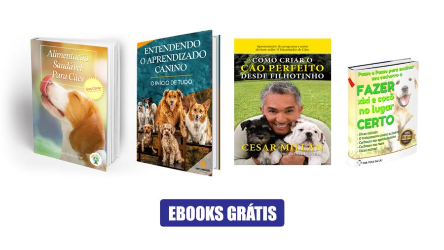 6 Ebooks GRÁTIS sobre cães para download